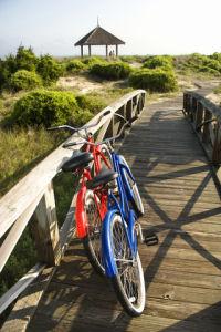 Biking on Cape Cod