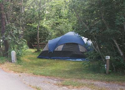 Cape Cod Campground - Coastal Acres Camping Court