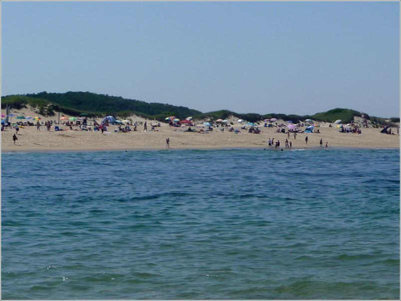 Head of the Meadow Beach