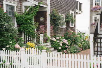 Beautiful Garden in Provincetown Mass