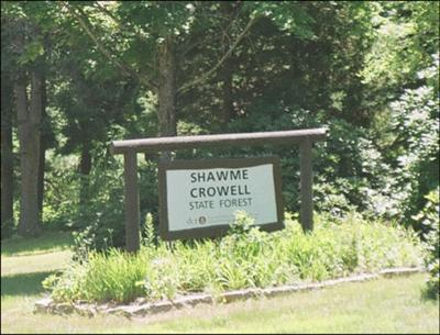 Cape Cod Campground - Shawme-Crowell State Forest
